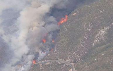 Požari na zapadu SAD-a (Foto: dnevnik.hr)