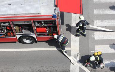Vatrogasci ilustracija (Foto: Nikola Cutuk/PIXSELL)