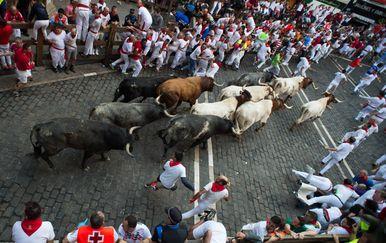 Utrke s bikovima u Pamploni (Foto: AFP)