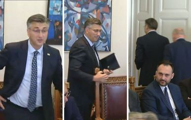 Andrej Plenković otišao sa sastanka (Foto: Dnevnik.hr)
