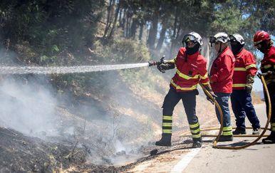 Požari u Portugalu (Foto: AFP)
