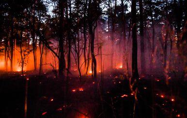 Vrućina izaziva požare diljem Europe (Foto: AFP)