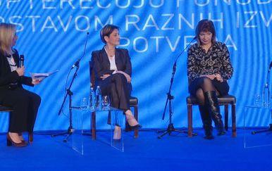 Vladine reforme (Foto: Dnevnik.hr) - 2
