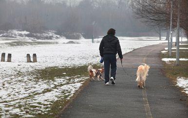 Vlasnik u šetnji s ljubimcima, ilustracija (Foto: Zarko Basic/PIXSELL)