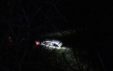 Mladić automobilom sletio u Dobru (Foto: Radio Mrežnica)