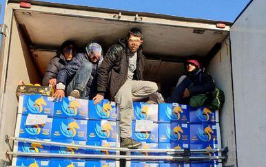 Migranti u pokušaju ilegalnog prelaska granice u Srbiji (Foto: Carina Srbije) - 1