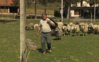 Uzgajivač ovaca Robert iz sela Mače (Foto: Dnevnik.hr)