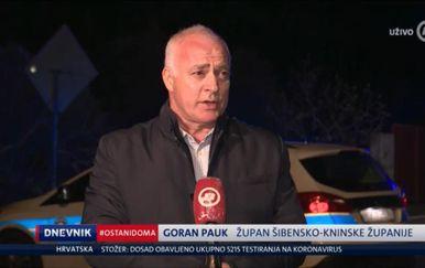 Goran Pauk