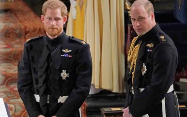 Princ Harry i princ William