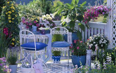 Balkon u cvijeću predivan je prizor