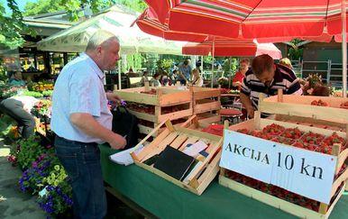 Inspekcije na terenu (Foto: Dnevnik.hr) - 1