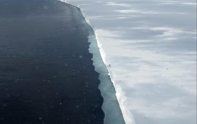 Rossova ledena ploča