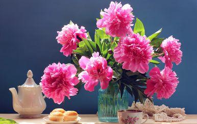 Cvijeće - 1