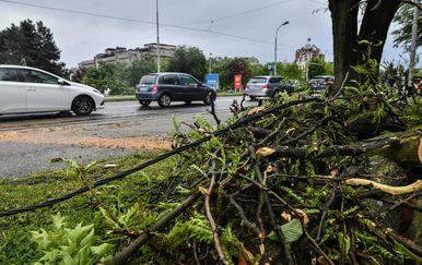 Snažan vjetar srušio stablo na tramvajski vod u Maksimirskoj ulici (Foto: Sandra Simunovic/PIXSELL)