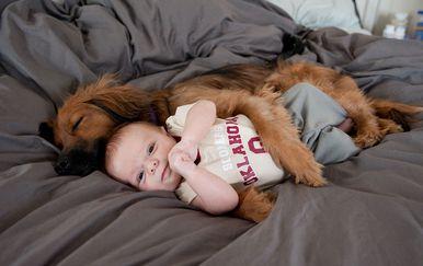 Djeca i ljubimci (Foto: brightside.me) - 1