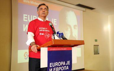Predizborni skup kandidata SDSS-a za EU izbore (Kristina Stedul Fabac/PIXSELL)