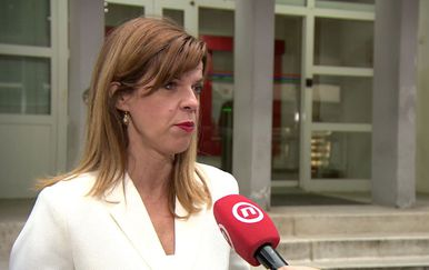 Zastupnica u EU Biljana Borzan (Foto: Dnevnik.hr)