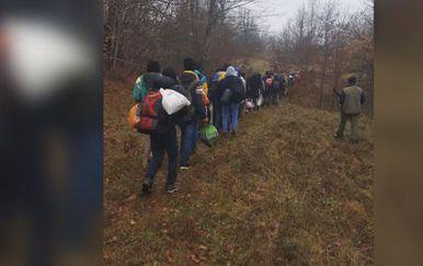 Migranti uhićeni u Lici (Foto: Dnevnik.hr)