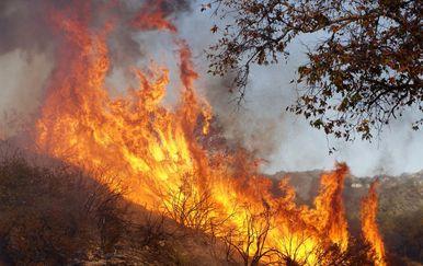 Požari u Kaliforniji (Foto: AFP) - 1