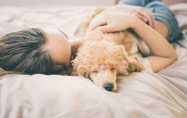 Psi imaju pozitivan učinak na kvalitetu sna