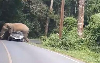 Slon i auto (Foto: Screenshot/YouTube)
