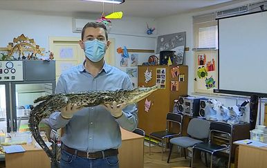 Mario Jurič s krokodilom