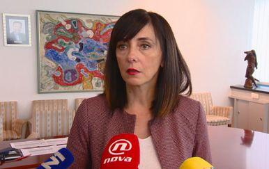 Blaženka Divjak, ministrica znanosti i obrazovanja (Foto: Dnevnik.hr)