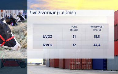 Uvoz i izvoz živih životinja u prvih šest mjeseci 2018. godine (Foto: Dnevnik.hr)