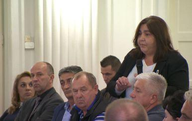Ljiljana Alvir (Dnevnik.hr)