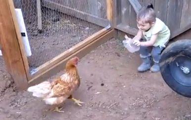 Djeca i kokoši (Foto: Screenshot/Facebook)