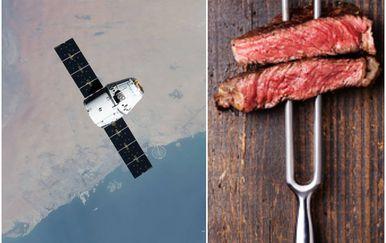 ISS, odrezak, ilustracija (Foto: ISS, GettyImages)