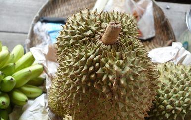 Voće durijan (Foto: Alexandra Schuler/DPA/PIXSELL)