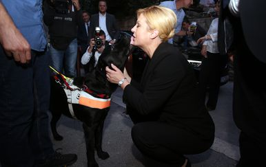 Kolinda Grabar- Kitarović posjetila je udrugu slijepih gdje se podružila s psom (Foto: Miranda Cikotic/PIXSELL)