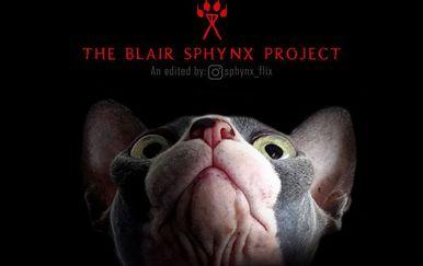 Horor mačke (Foto: Instagram/sphynx_flix)