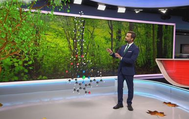 Darijo Brzoja o razlozima zbog kojih lišće mijenja boju (Foto: Dnevnik.hr) - 2