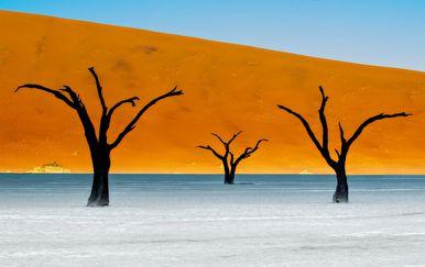 DeadVlei u Namibiji - 2