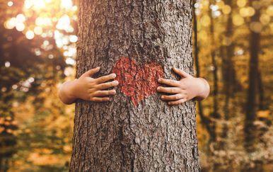 Dijete grli drvo