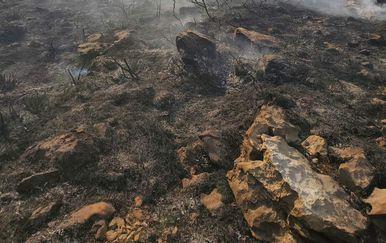 Požar kod Dubrovnika - 1