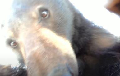 Medvjed pronašao kameru