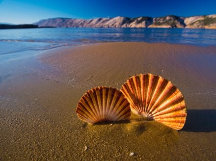 Kvarnerska pješčana plaža koja ima sve što godišnji odmor može poželjeti