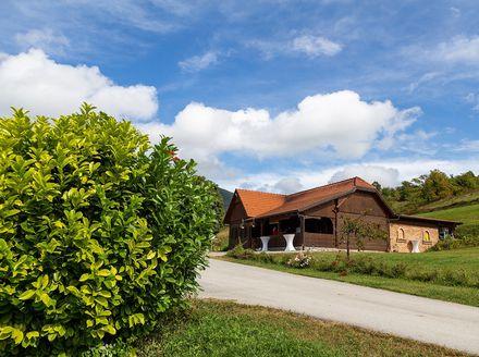 Vinogradarska kuća Braje - 10