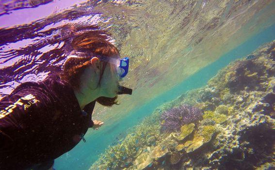 Veliki koraljni greben - 7