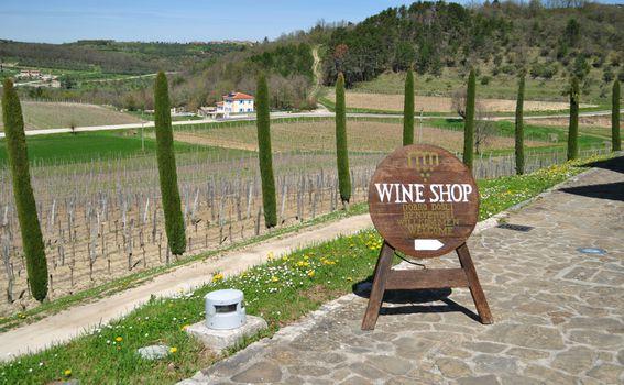 Sweet Wine and Walk - 16