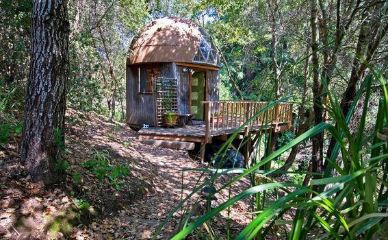 Kućica u obliku gljive u Kaliforniji na Airbnb-u - 2