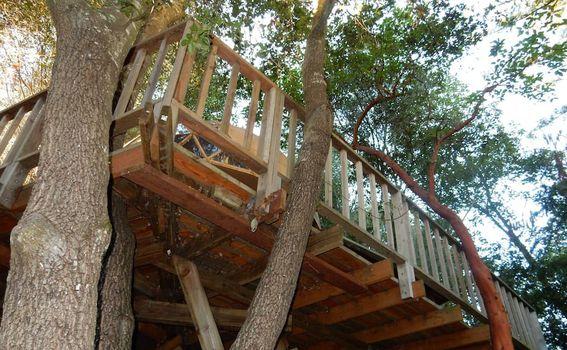 Kućica u obliku gljive u Kaliforniji na Airbnb-u - 3