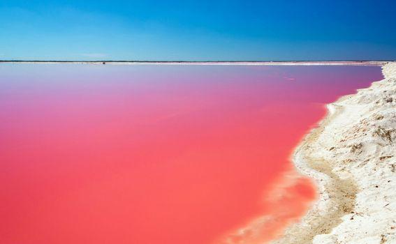 Ružičasto more, Meksiko - 4