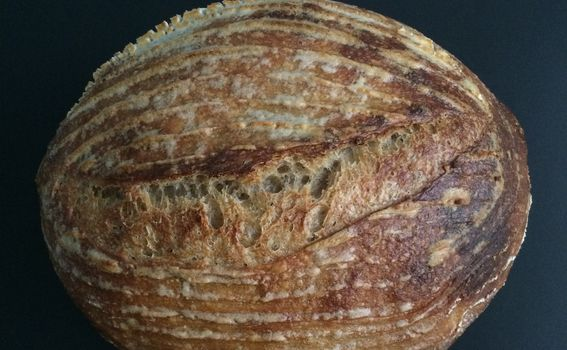Sourdough - 1