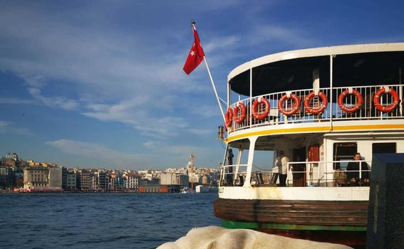Lutalice u Istanbulu - 1