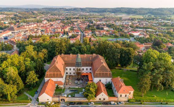 Dvorac grofa Jankovića