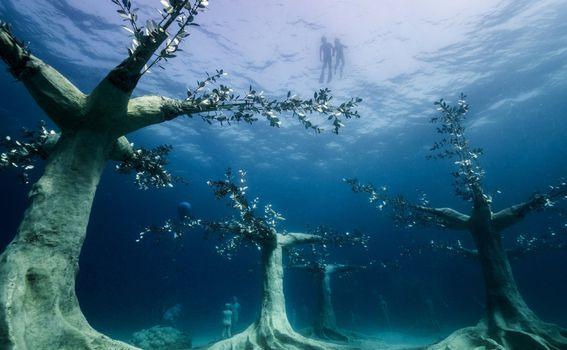 MUSAN - podvodna šuma kod Cipra - 4